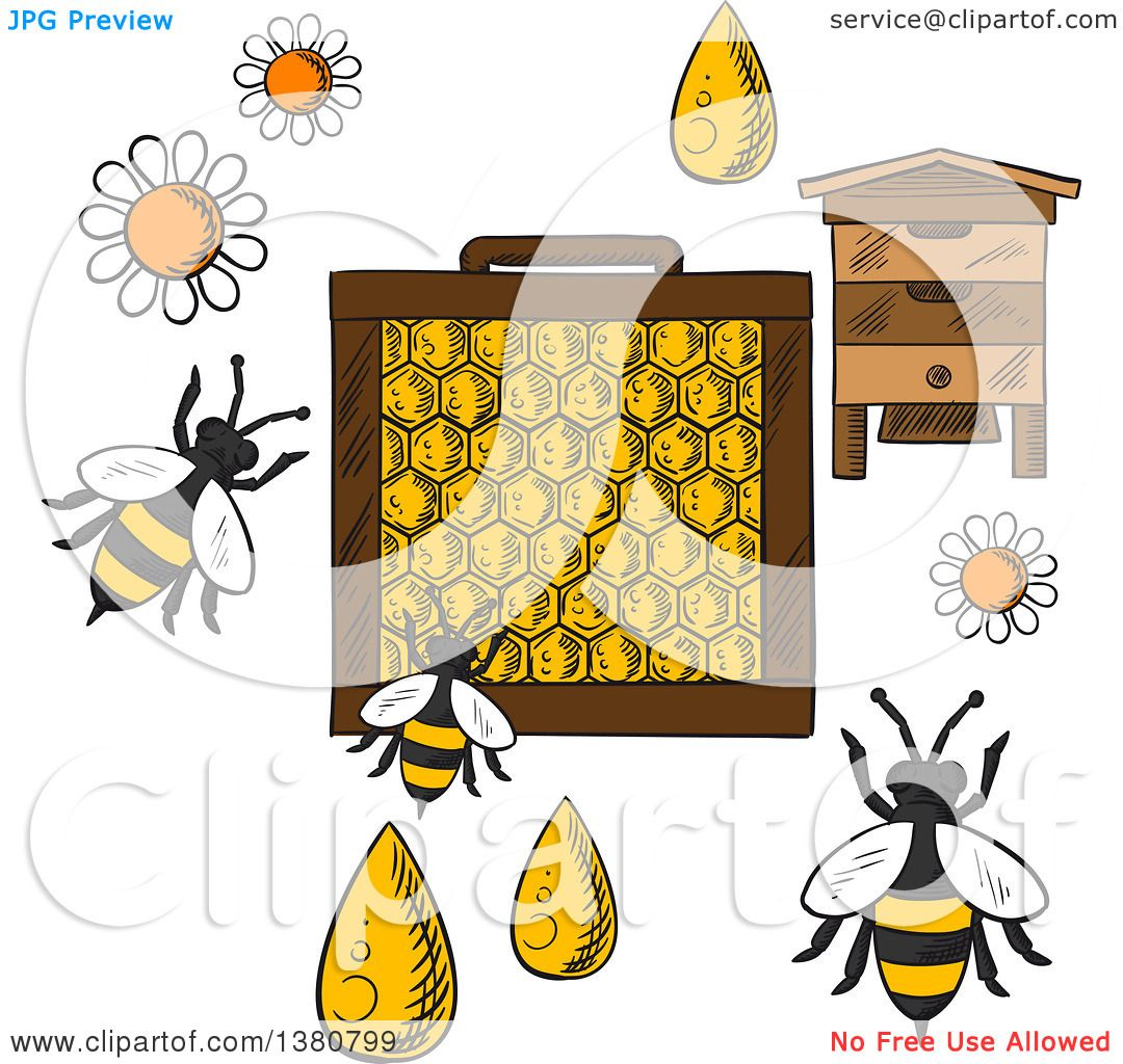 Clipart Of A Sketched Beehive Frame With Honeycombs And Bees Flying Around Flowers Drops Honey On Orange Background Text Beekeeping