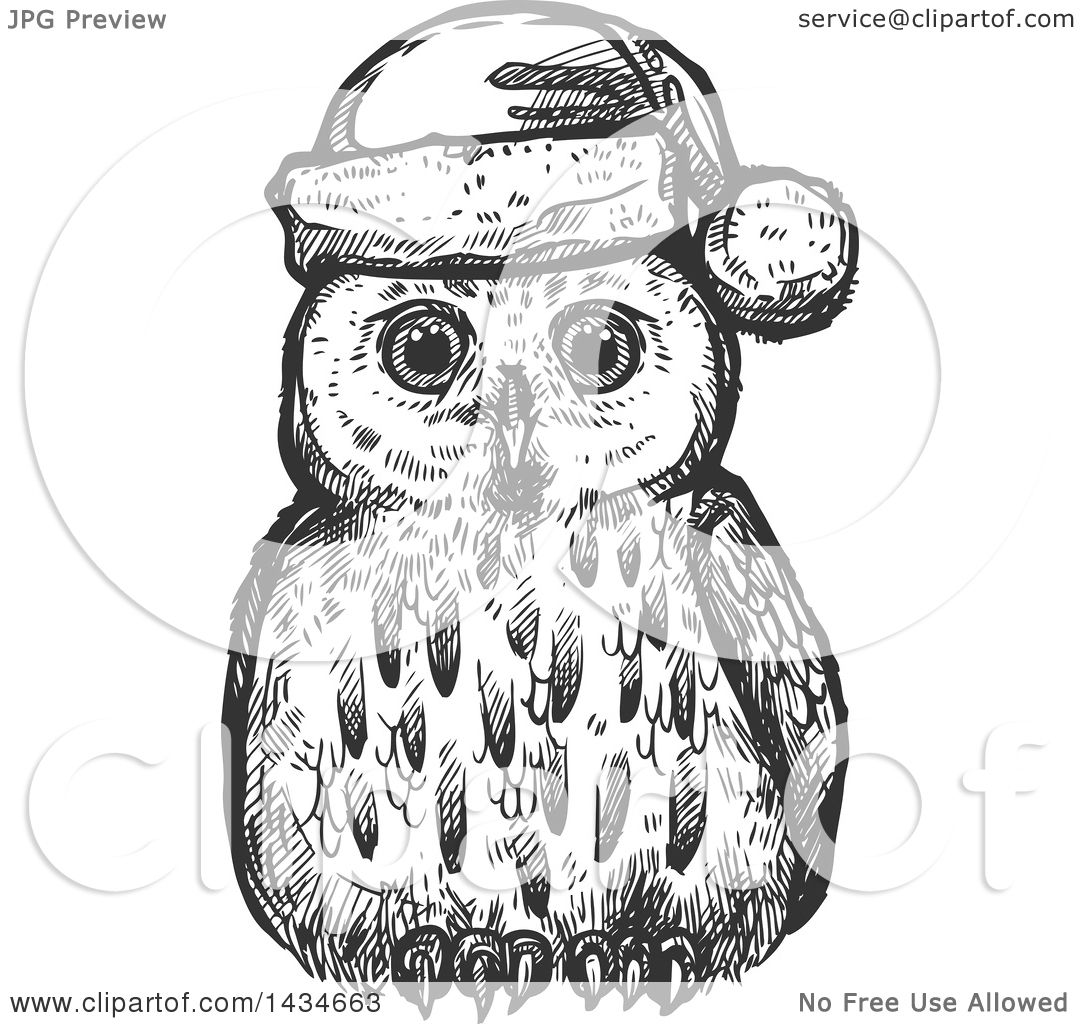 Clipart Of A Sketched Dark Gray Christmas Owl Wearing A
