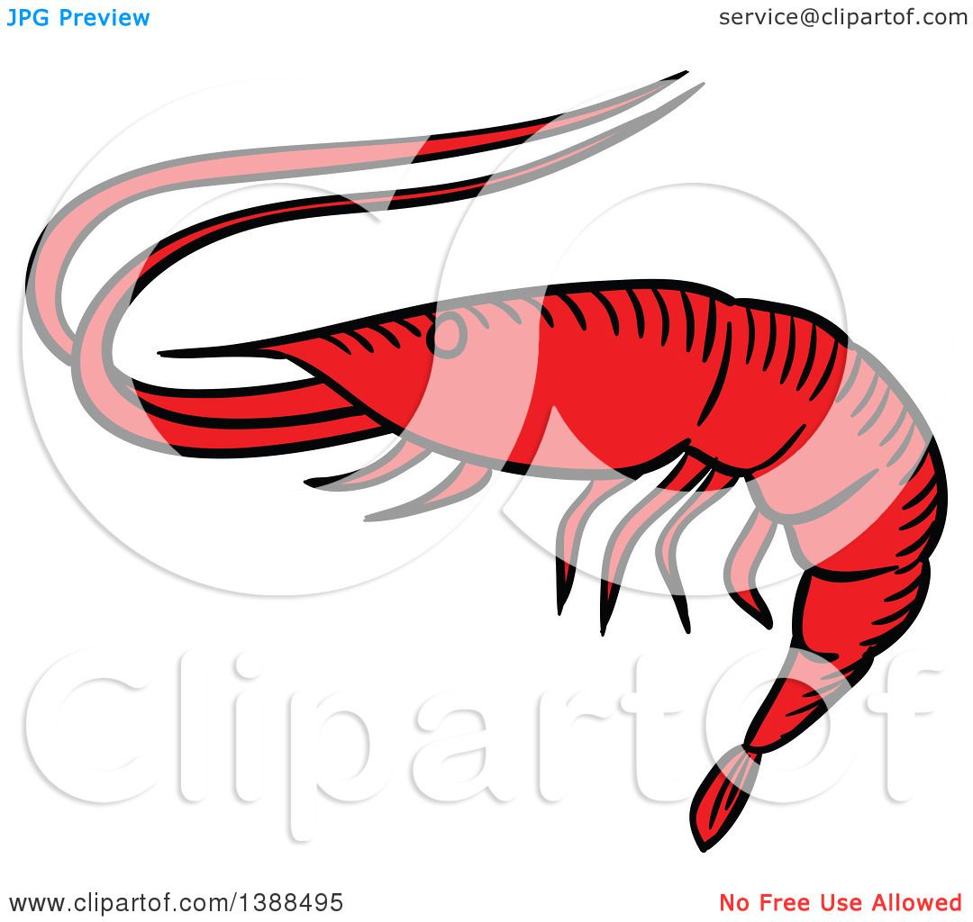 clipart of a sketched prawn royalty free vector illustration by rh clipartof com free clip art pants free clip art praying hands