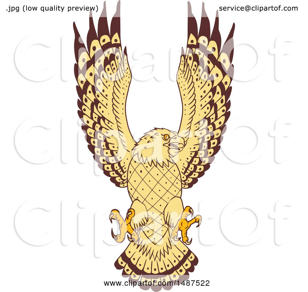 Clipart of a Sketched Sea Hawk Osprey Bird Swooping ...