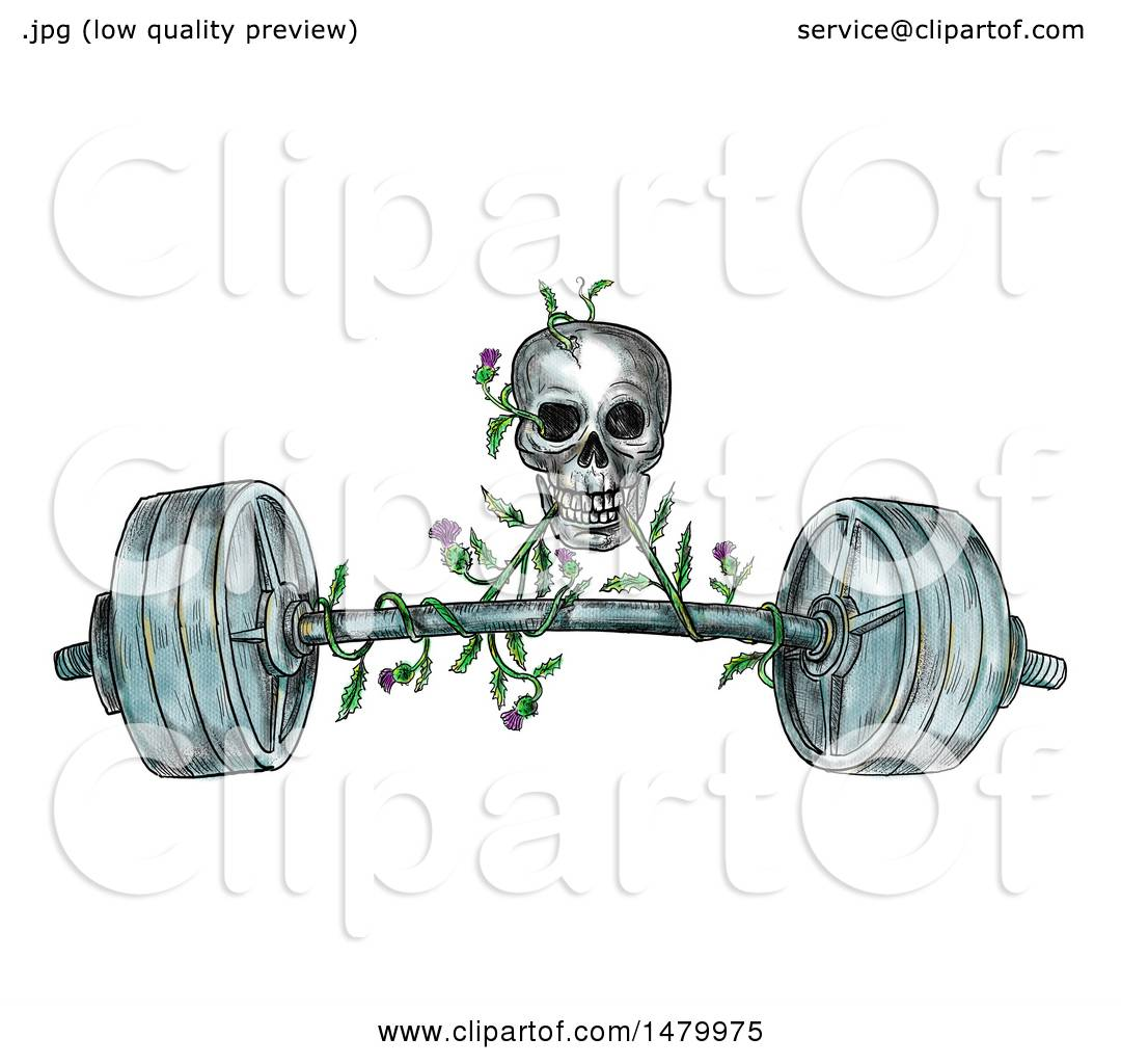 1fa5b4cfe patrimonio. Clipart of a Skull Lifting a Barbell with a Scottish Thistle  Vine in Sketched Tattoo Style