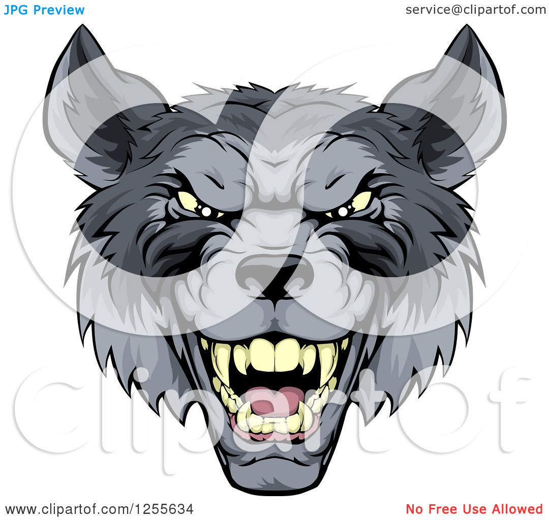 Clipart Of A Snarling Gray Wolf Mascot Head Royalty Free Vector  Illustration By Atstockillustration How To