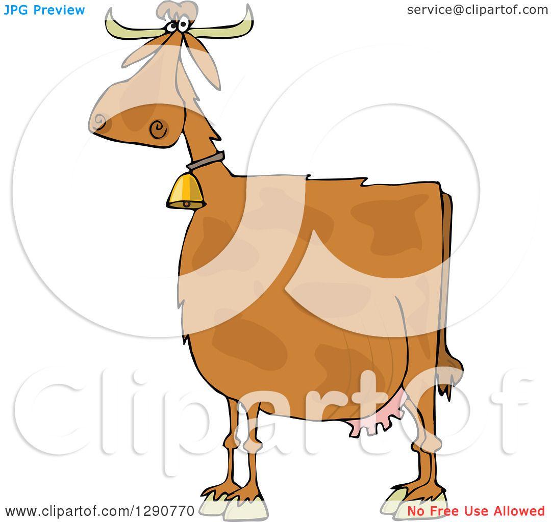 Brown swiss cow clip art