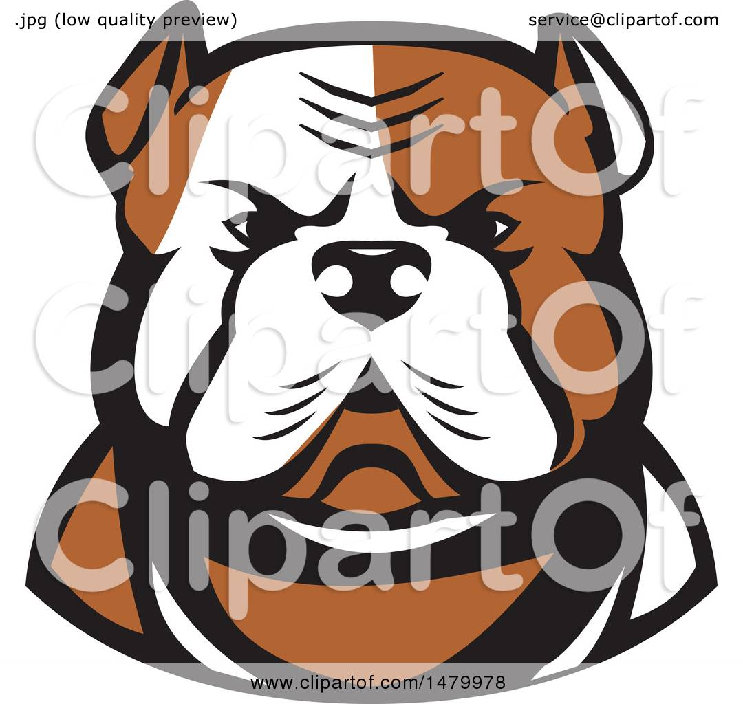 Clipart Of A Tough American Bulldog Head In Tan And White Royalty