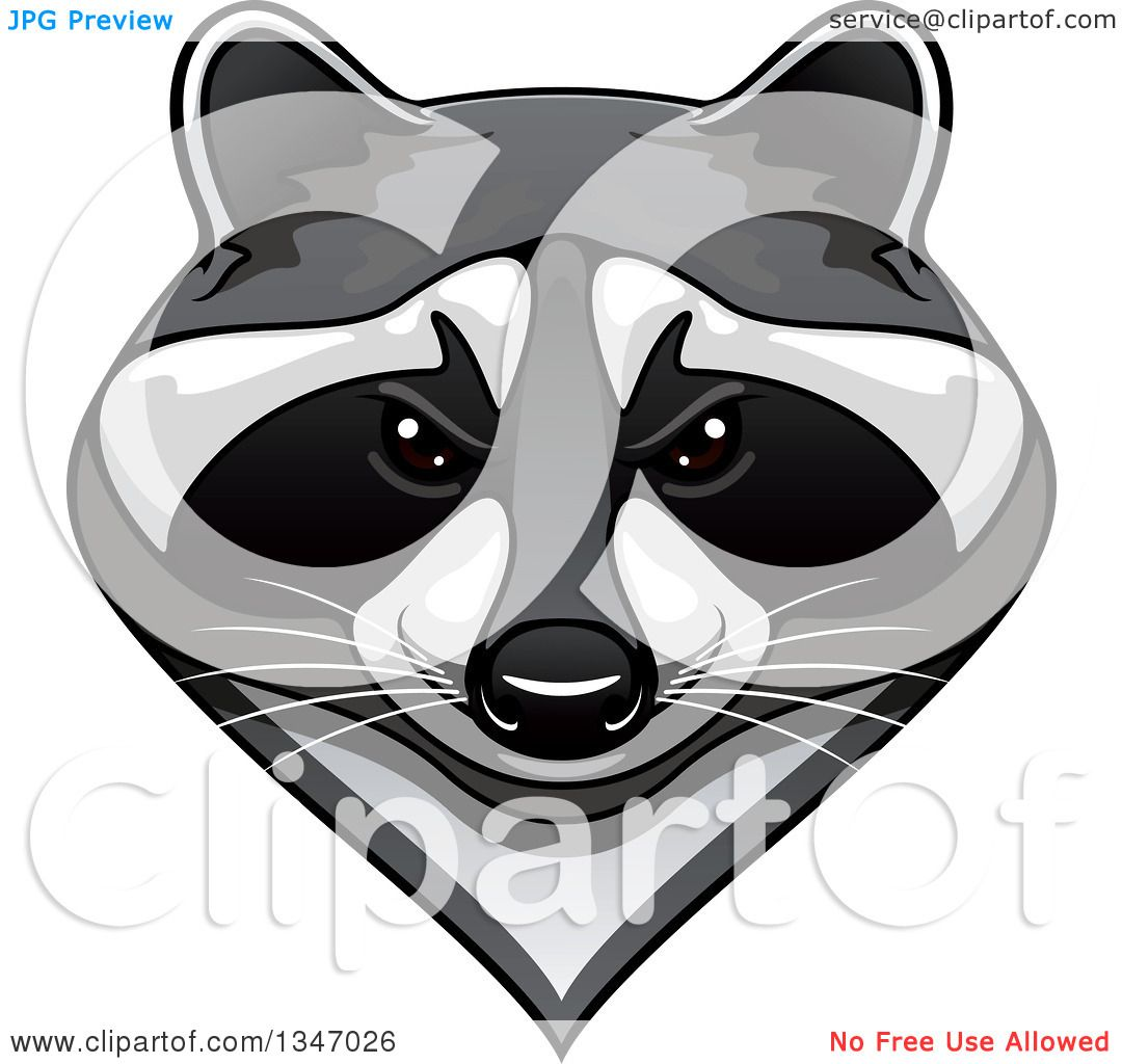 Clipart of a Tough Raccoon Mascot Face - Royalty Free ... Raccoon Face Illustration