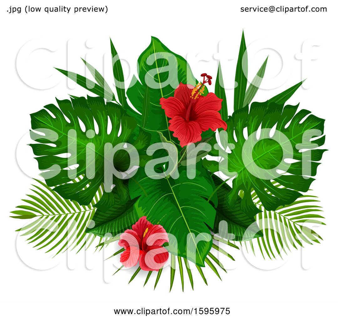 Clipart Of A Tropical Hibiscus Flower Design Royalty Free Vector