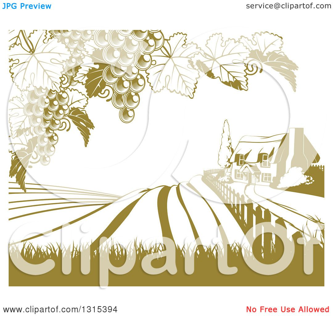 Clipart Of A Vineyard Cottage Farm House And Rolling Hills With Grape Vines In Green White