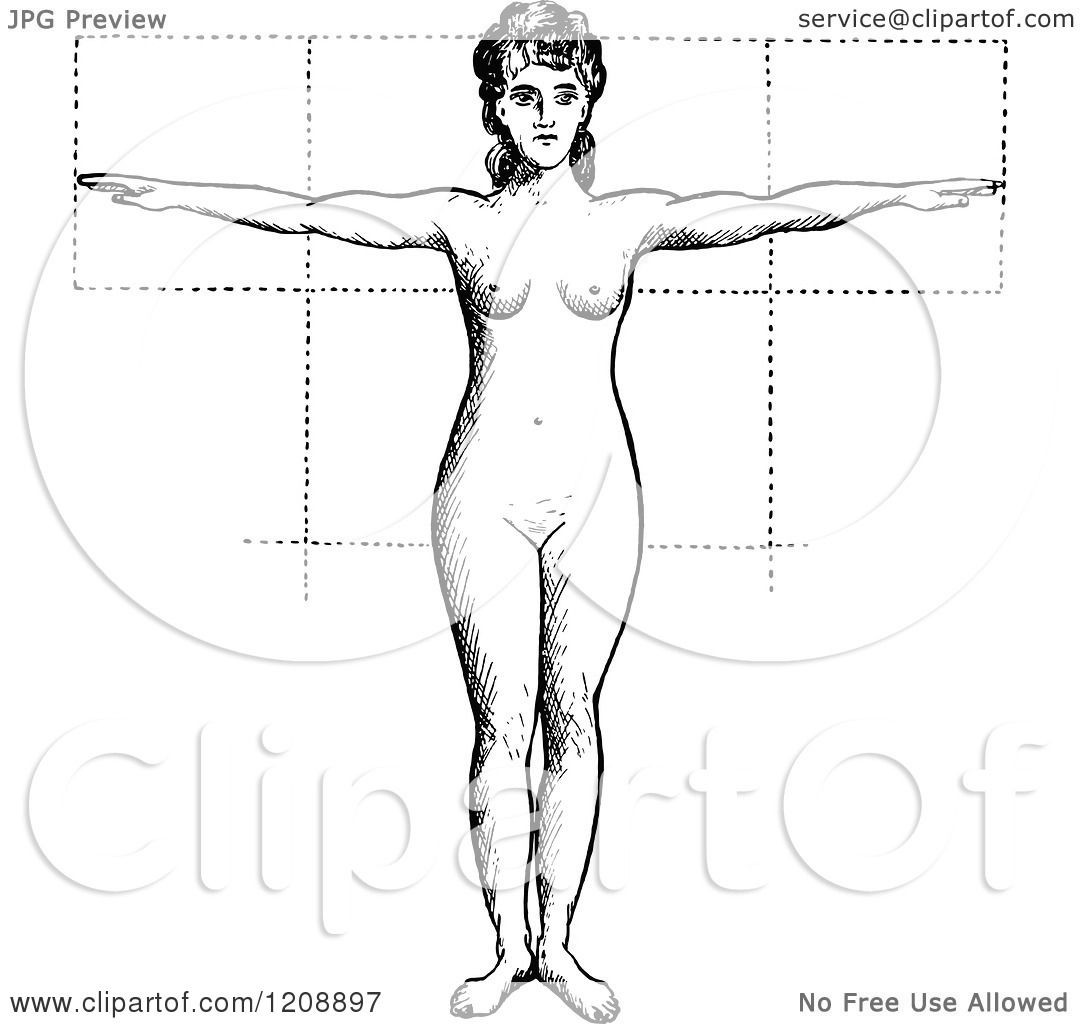 Clipart of a Vintage Black and White Anatomy of Female Proportions ...