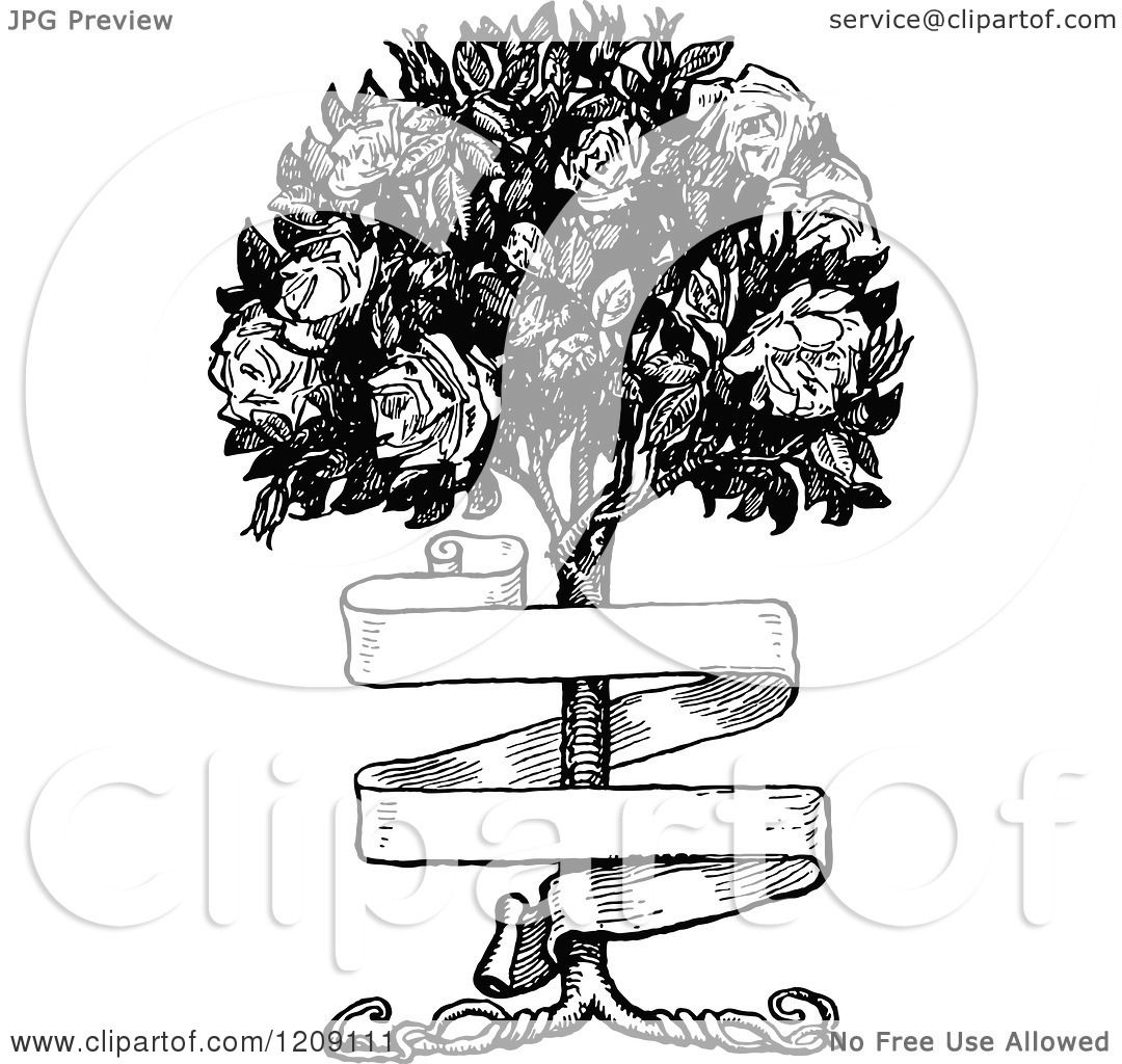 Clipart Of A Vintage Black And White Banner And Rose Bush