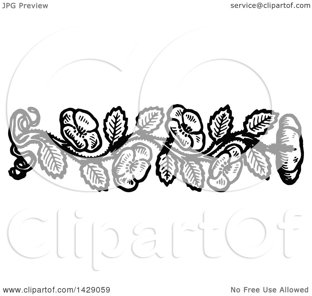 Clipart of a vintage black and white flower border royalty free clipart of a vintage black and white flower border royalty free vector illustration by prawny vintage mightylinksfo Image collections