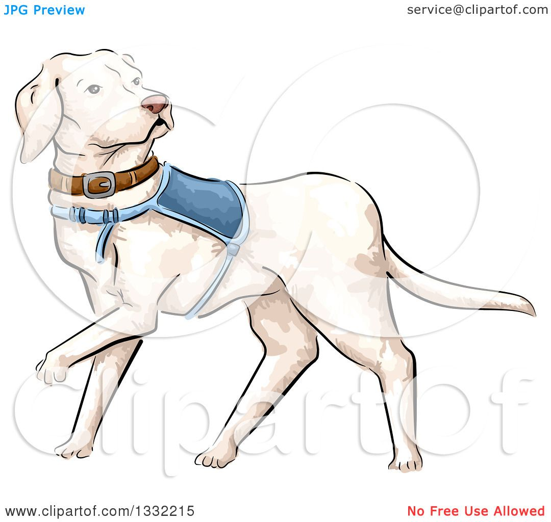 Clipart of a Walking White Guide Dog - Royalty Free Vector ...