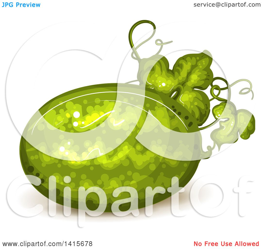 Clipart of a Watermelon on the Vine - Royalty Free Vector ...