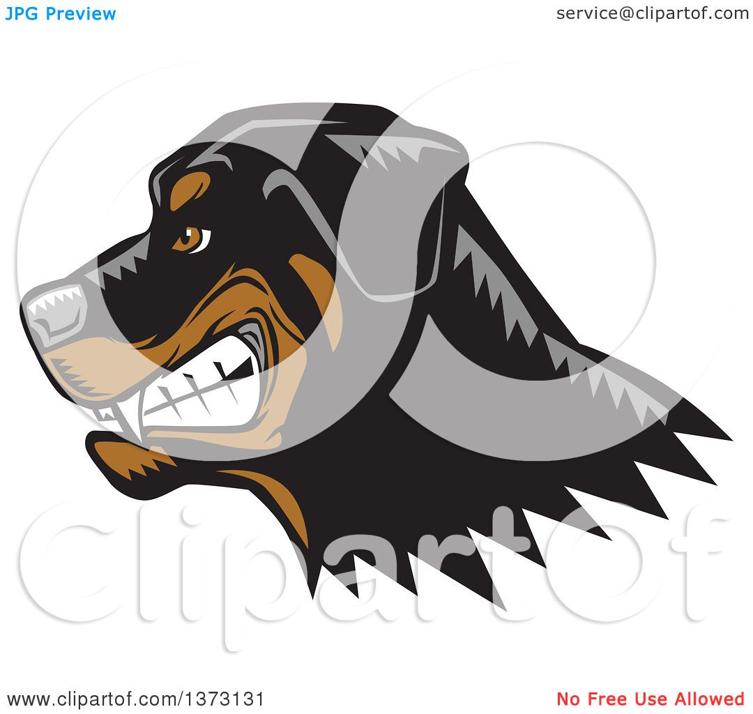 How To Draw A Mean Dog Jpg 1080x1024 Growling Rottweiler Drawings Wolf  Drawing