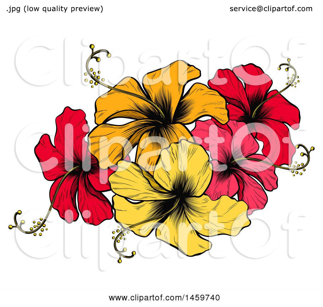 Clipart Of An Engraved Or Woodcut Colorful Hibiscus Flower Design