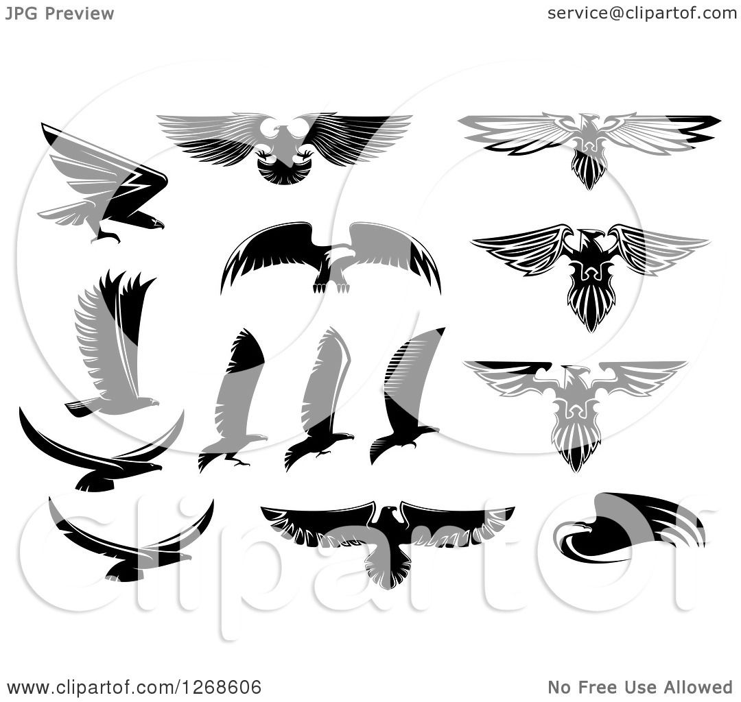 Clipart of Black and White Eagle Designs - Royalty Free Vector ...
