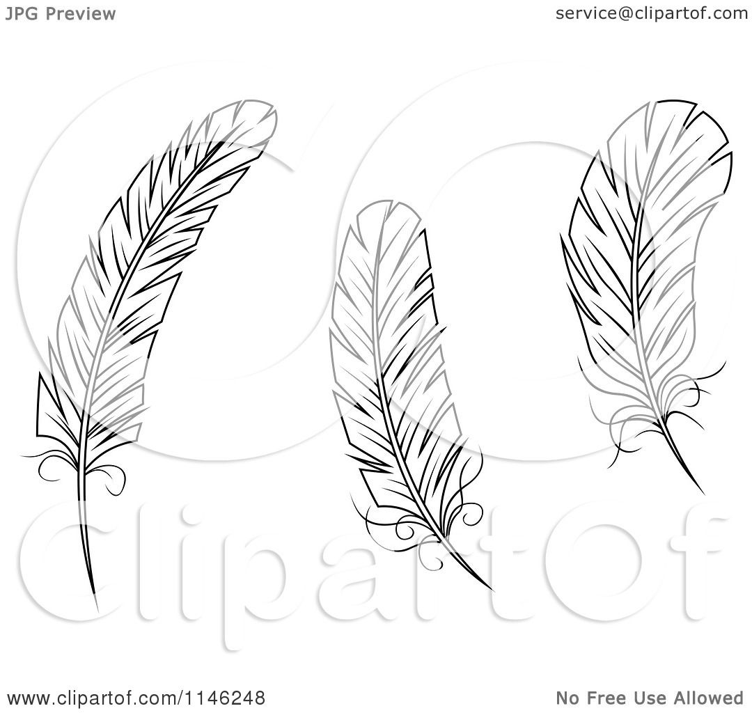 Clipart of black and white feathers royalty free vector for Coloring pages of feathers