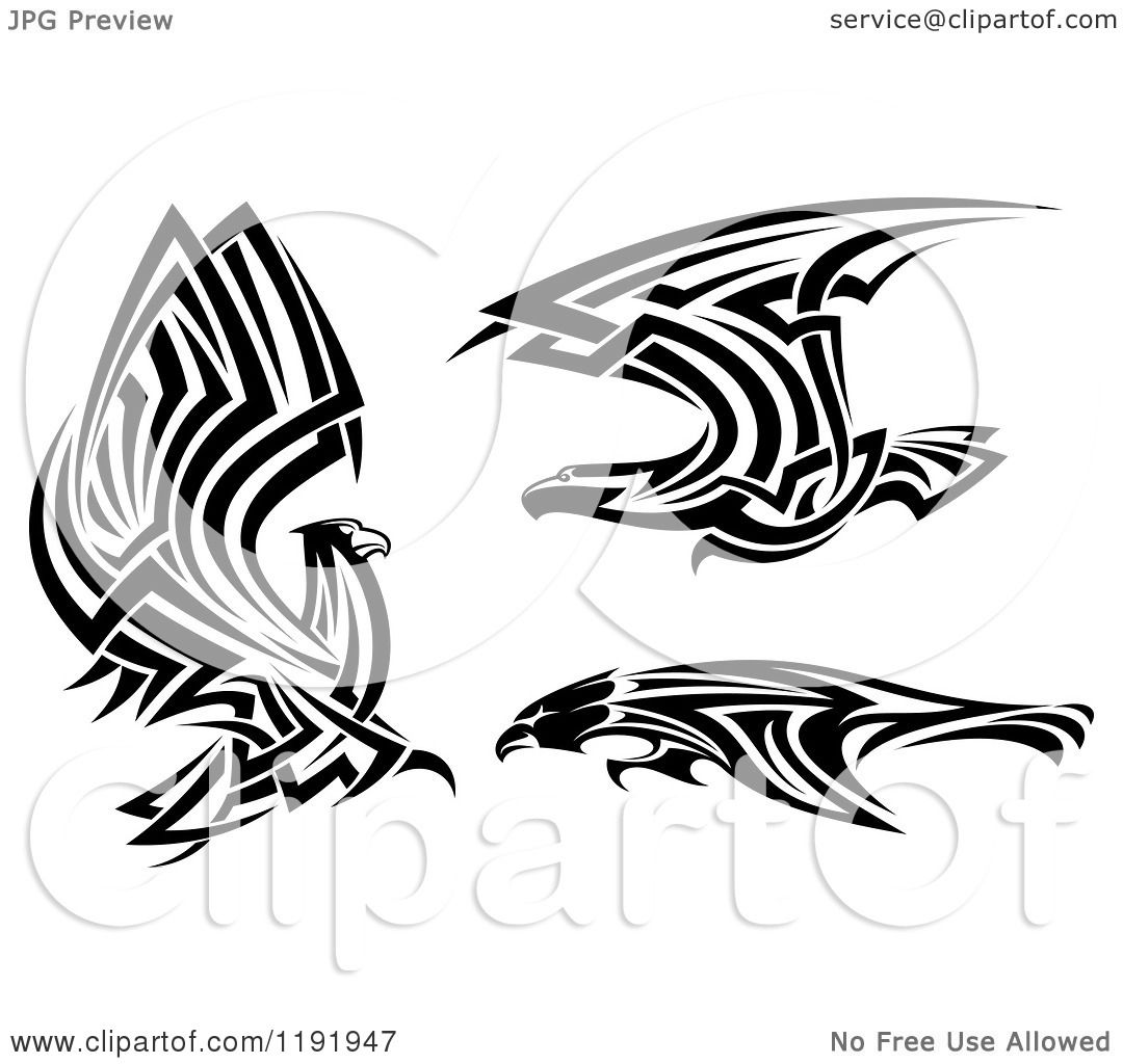 clipart of black and white flying tribal eagles falcons or hawks rh clipartof com hawk clipart abstract hawk clipart images