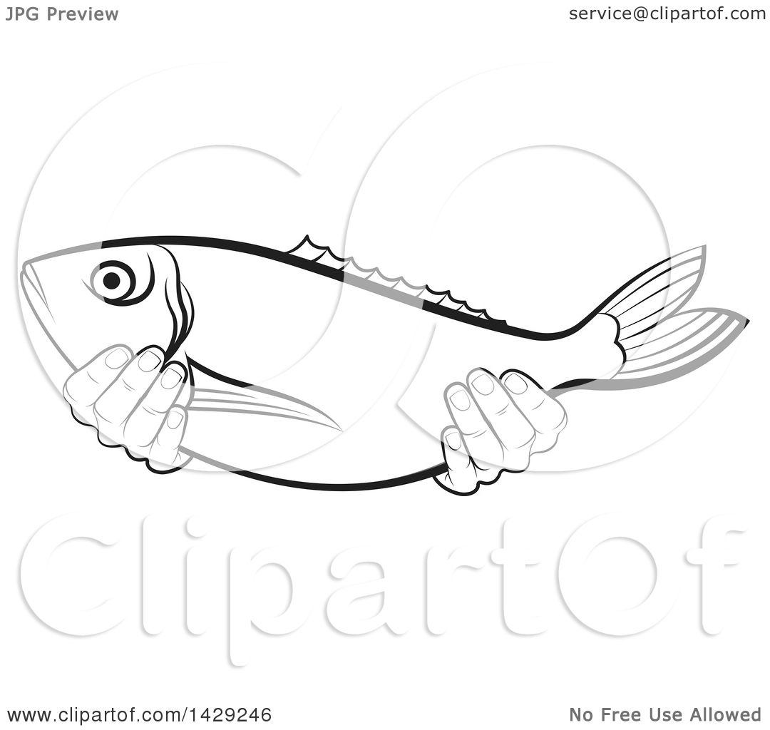 Clipart of Black and White Hands Holding a Fish - Royalty ...