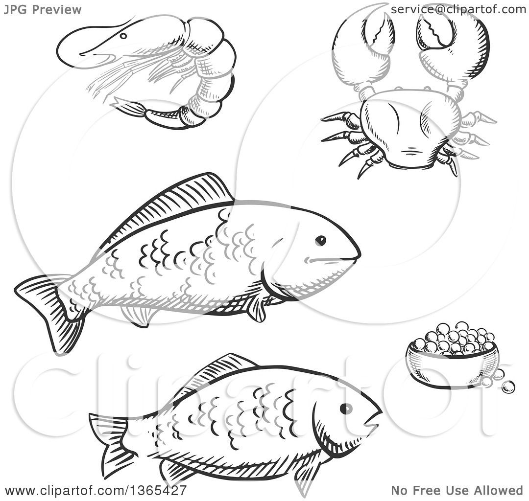 Clipart of Black and White Sketched Seafood Fish, Caviar, Crab and ...