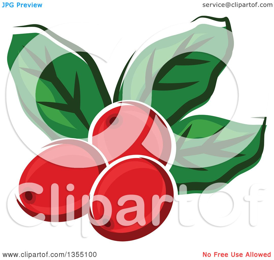 clipart of cartoon arabica coffee berries and leaves royalty