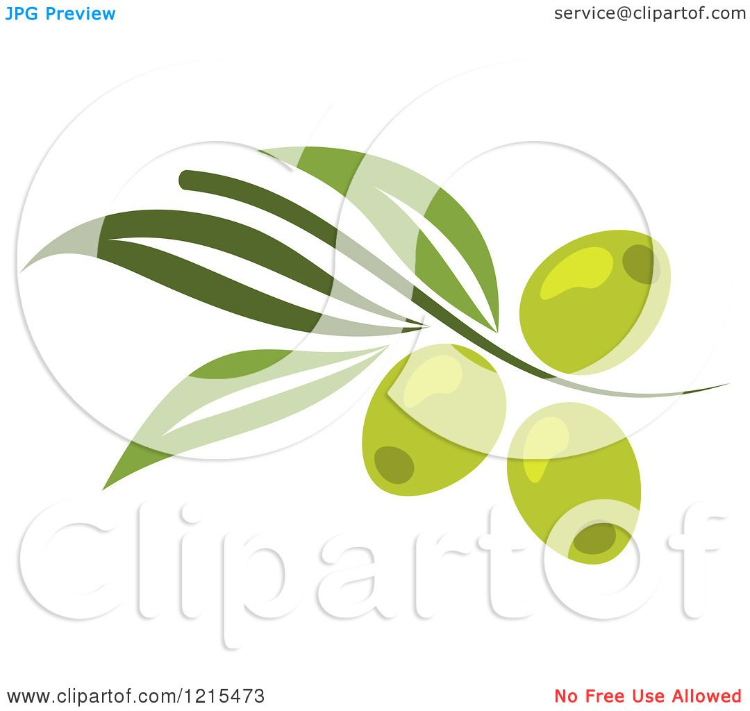 Clipart of Green Olives with Leaves - Royalty Free Vector ...