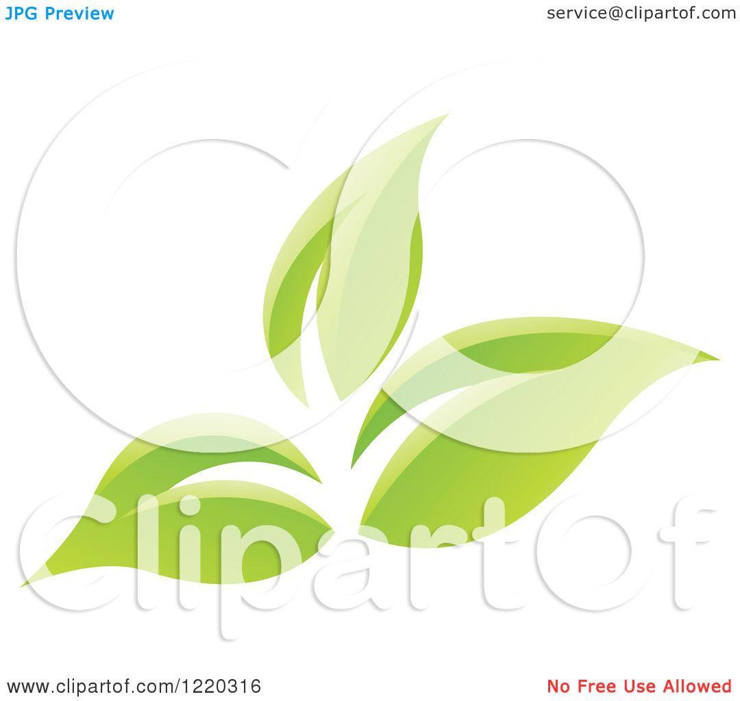 Related Pictures tatuaje rosas flores tatuaje tattoo rosa flor id 4000