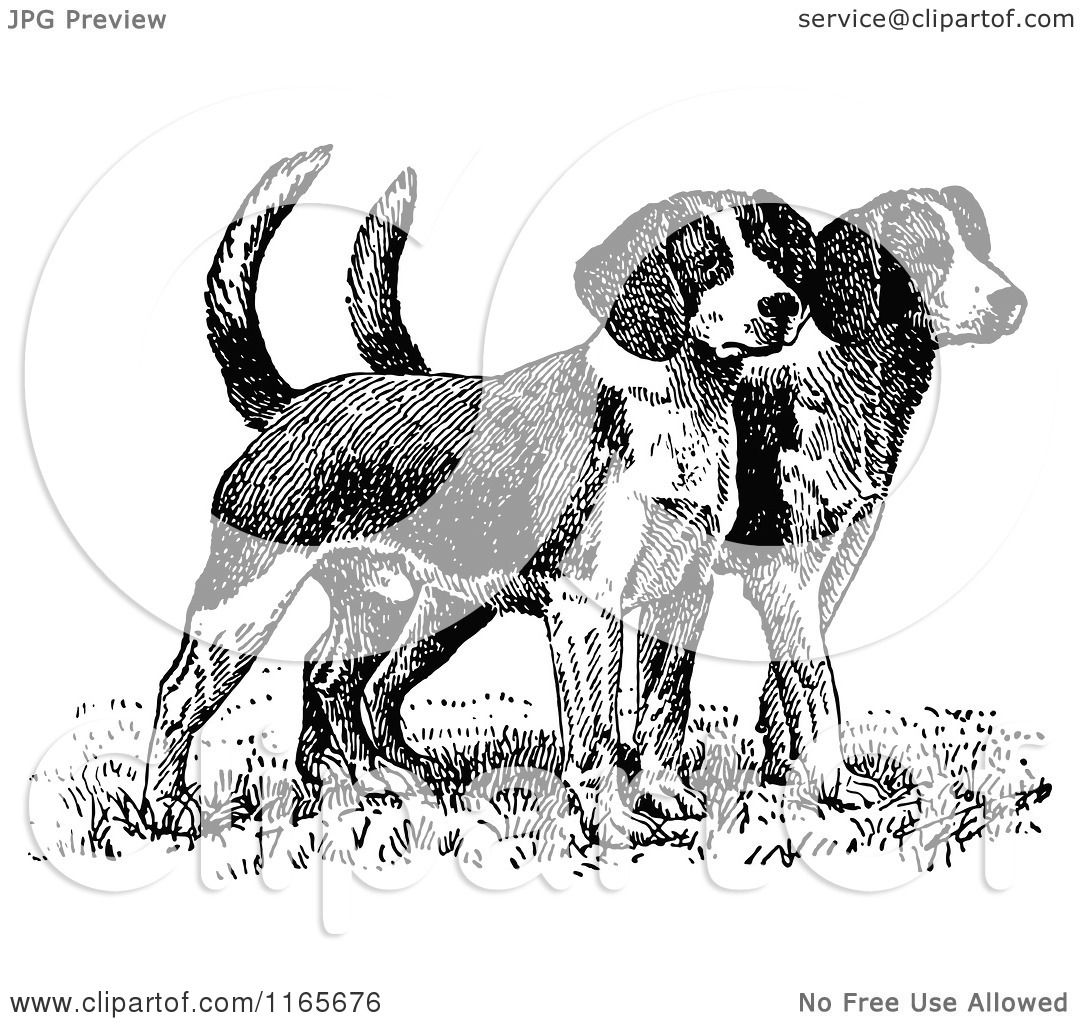 Classic Retro Illustration: Clipart Of Retro Vintage Black And White Beagle Puppies