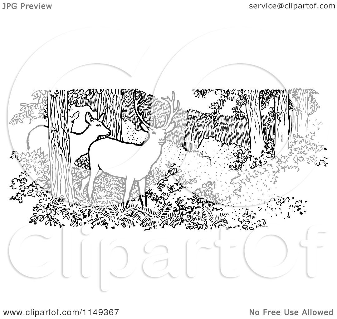 clipart of retro vintage black and white deer in the woods