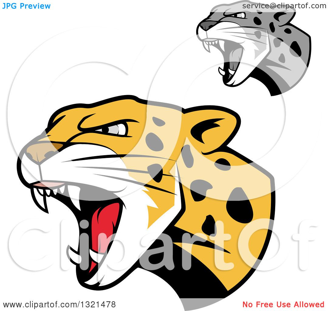 Clipart Of Roaring Angry Jaguar Or Leopard Big Cat Heads