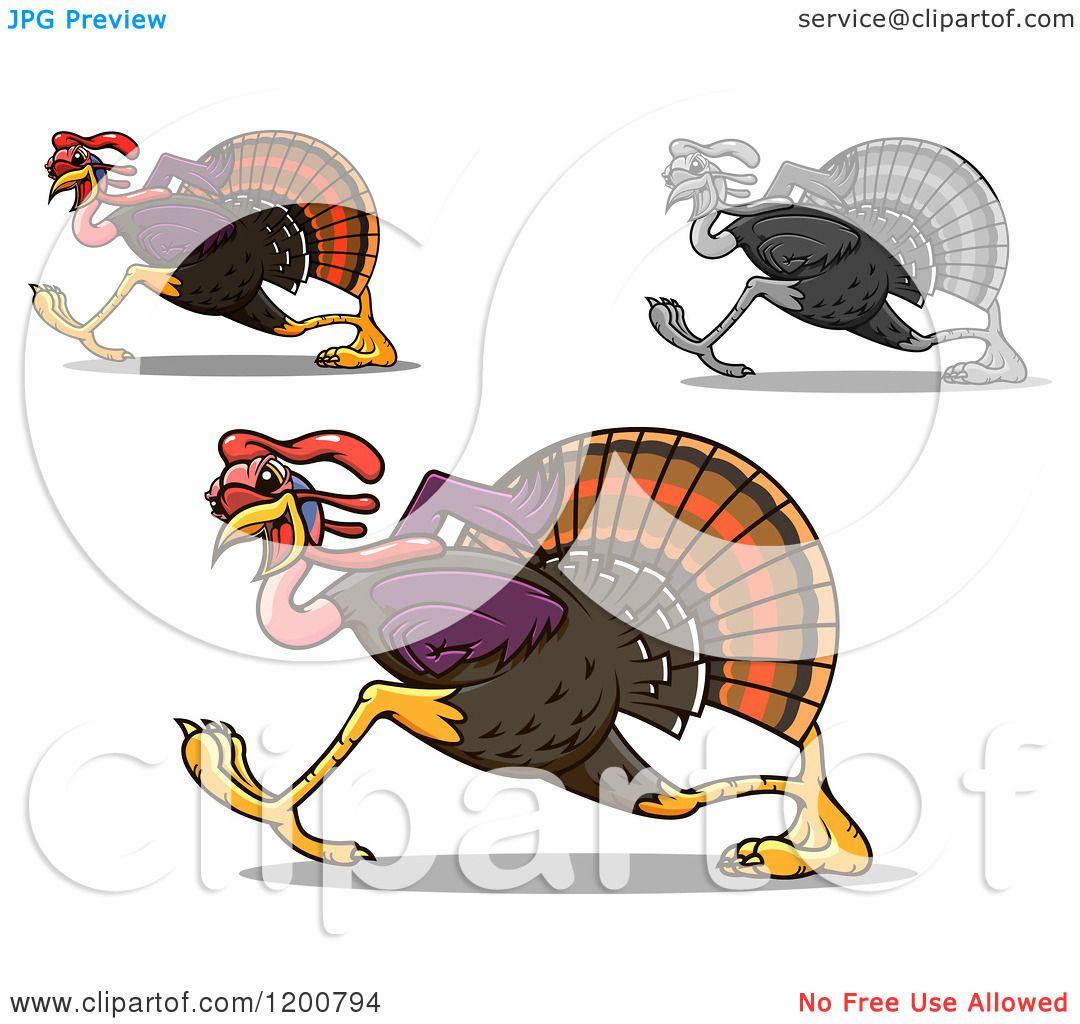 Turkey Running Clip Art - Viewing Gallery