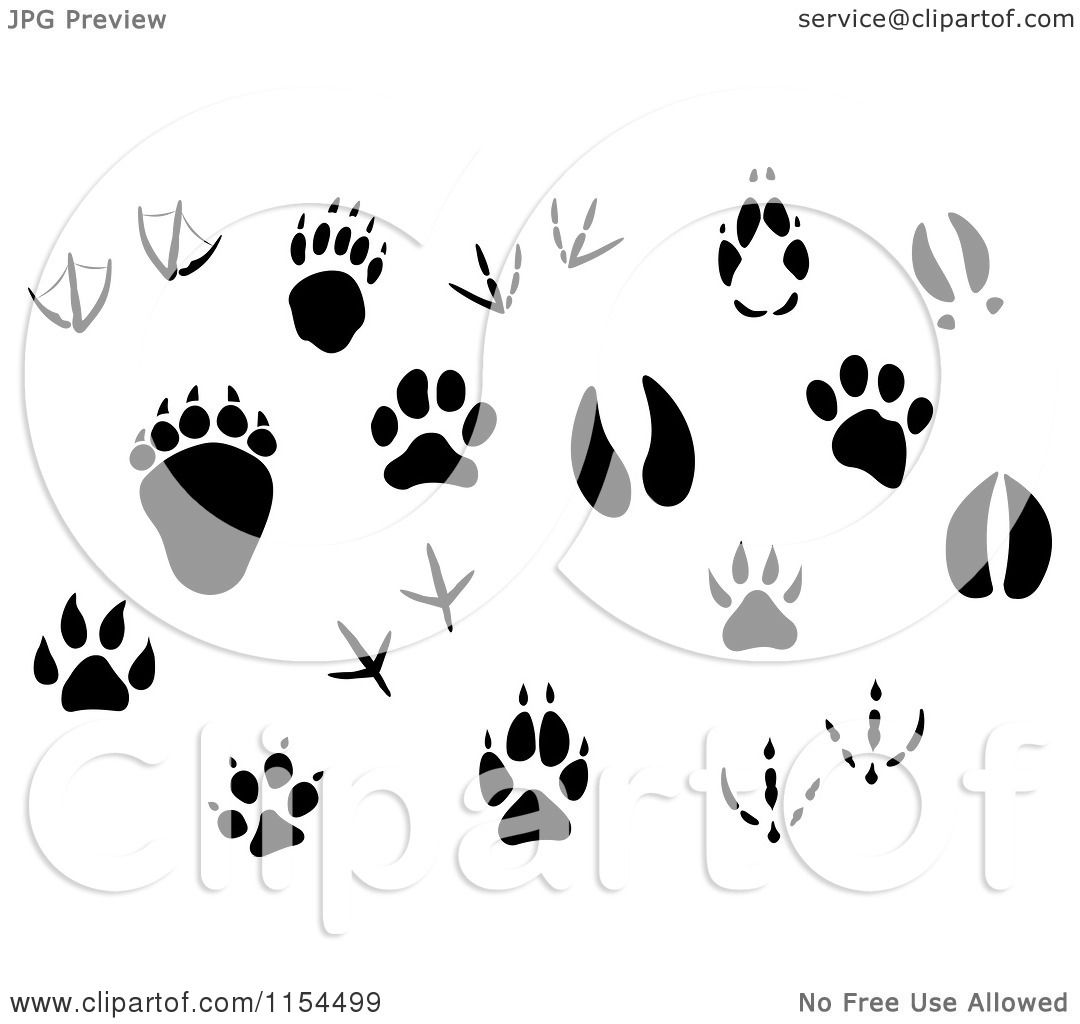Clipart of Silhouetted Animal Tracks - Royalty Free Vector ...