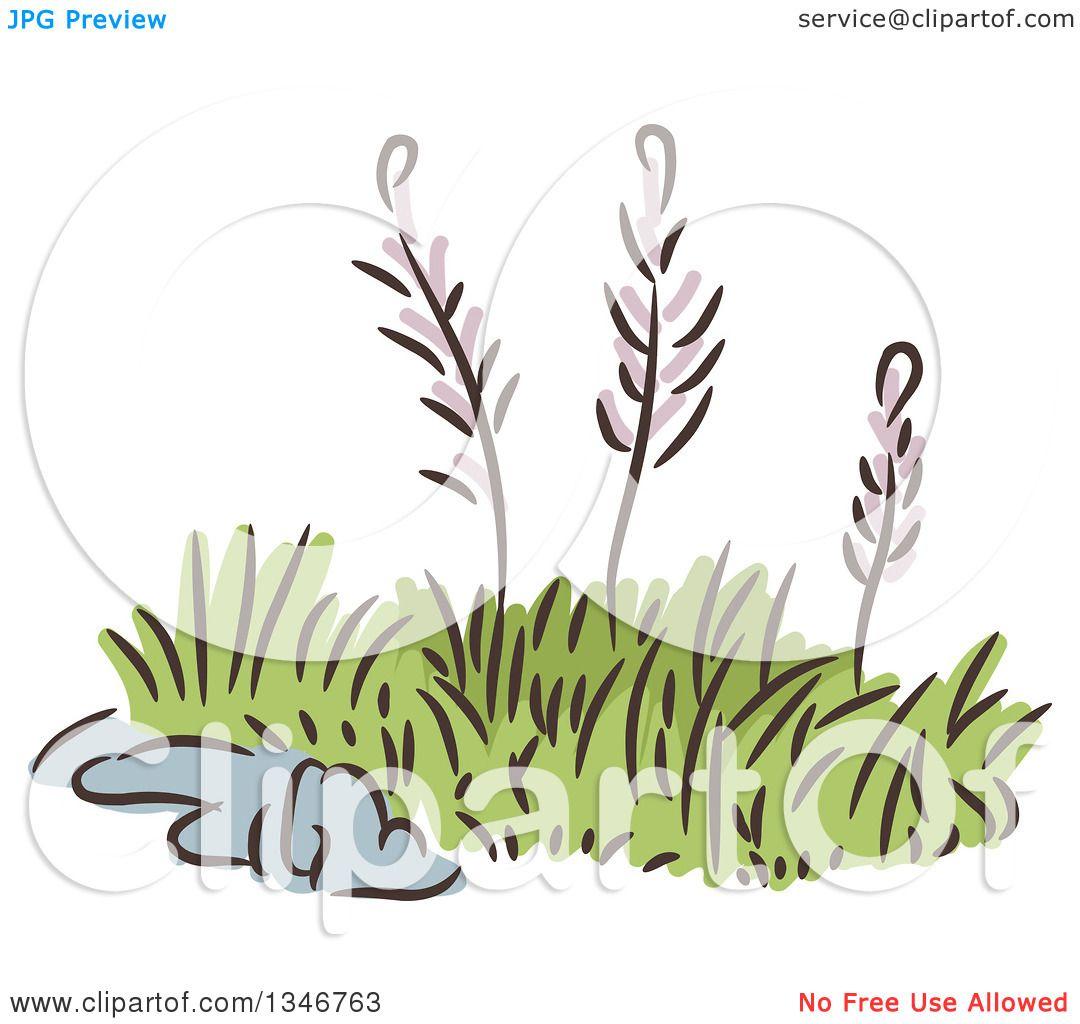 garden weeds clipart - photo #16