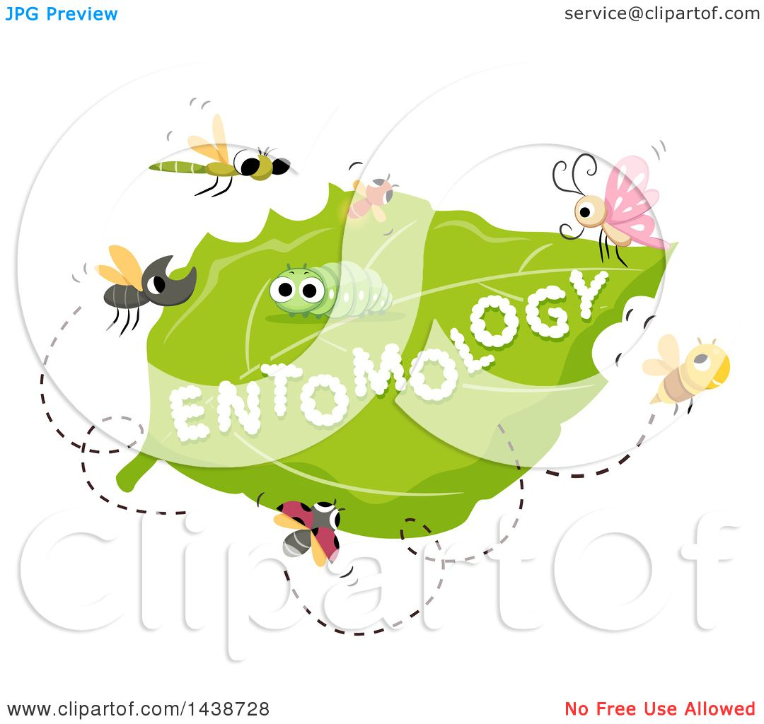 Toriko Surrounded By Bugs Jpg: Clipart Of The Word Entomology Written On A Leaf