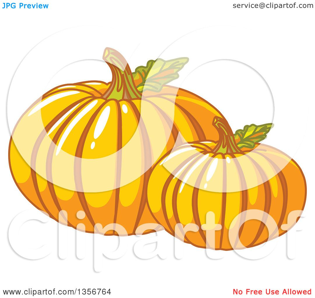 Clipart Of Two Round Pumpkins With Leaves