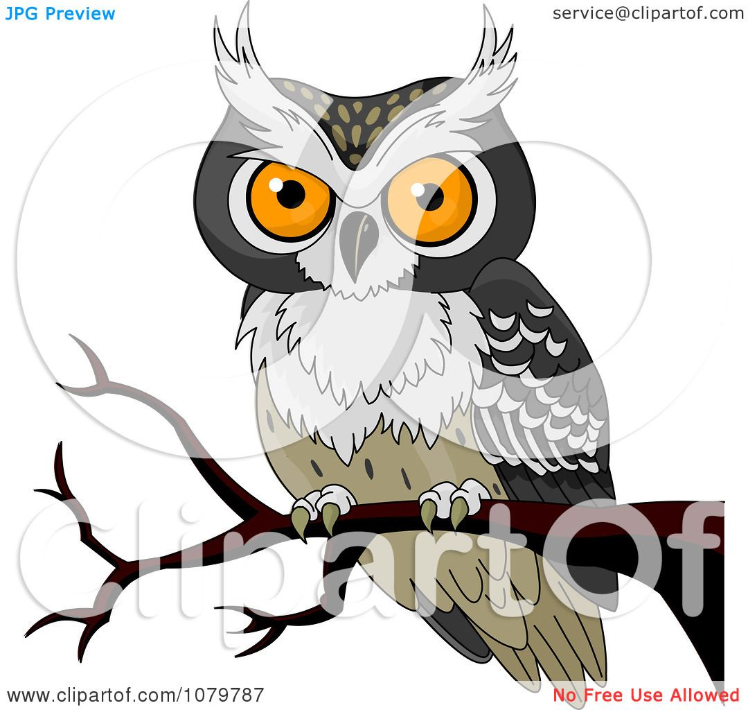 Clipart Orange Eyed Owl On A Branch - Royalty Free Vector ...