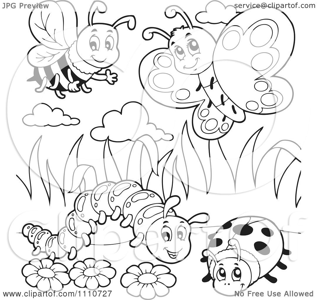 Clipart Outlined Bee Butterfly Caterpillar And Ladybug - Royalty ...