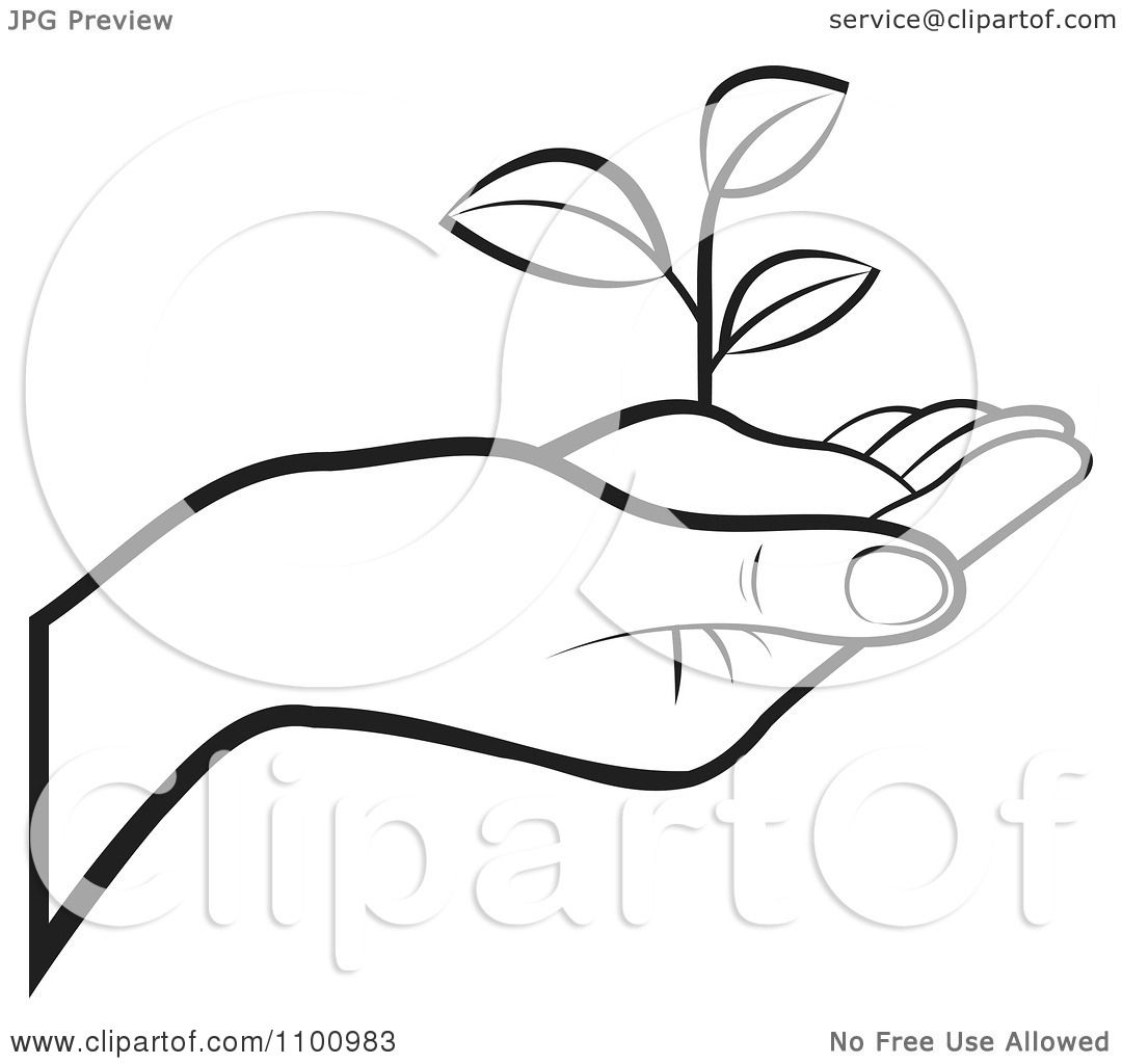 Clipart Outlined Human Hand Holding A Plant In Soil Royalty Free