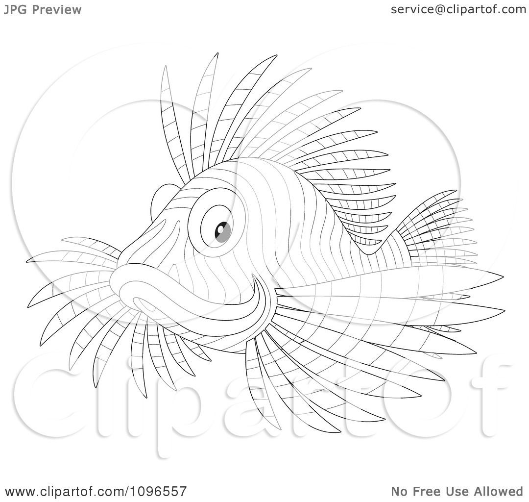 Clipart Outlined Lion Fish Royalty Free Illustration By