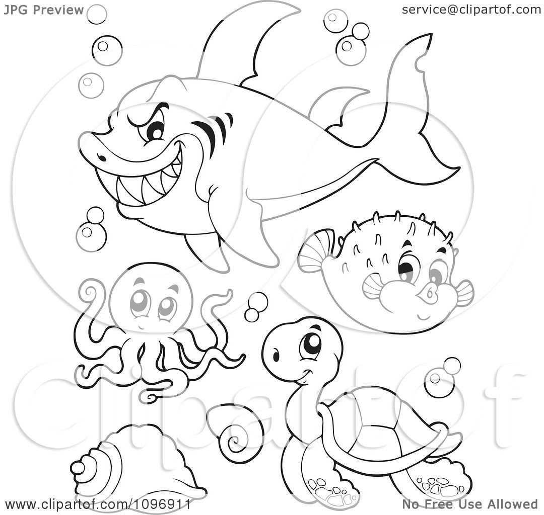 Free Coloring Pages Of How To Draw A Blowfish