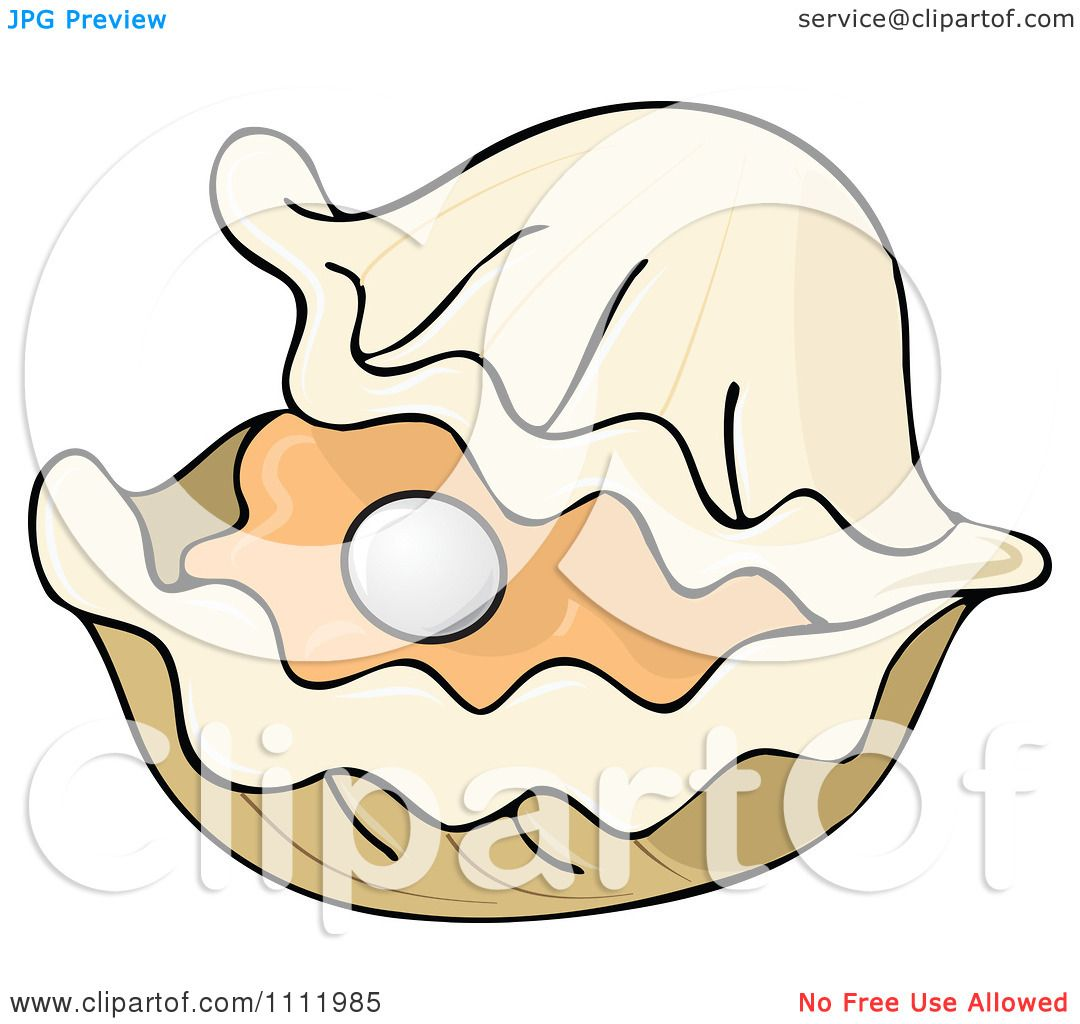Open Clam Shell Vector Clipart pearl in an open Open Oyster Shell With Pearl