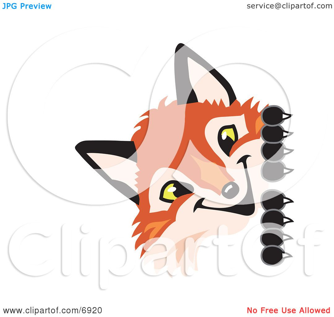 Clipart Picture of a Fox Mascot Cartoon Character Peeking