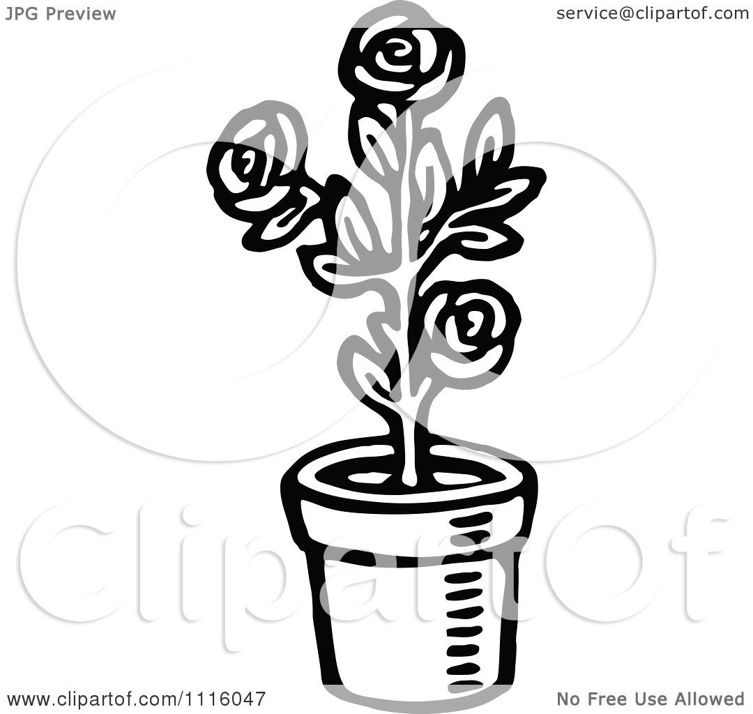 Clipart Retro Vintage Black And White Potted Rose Plant