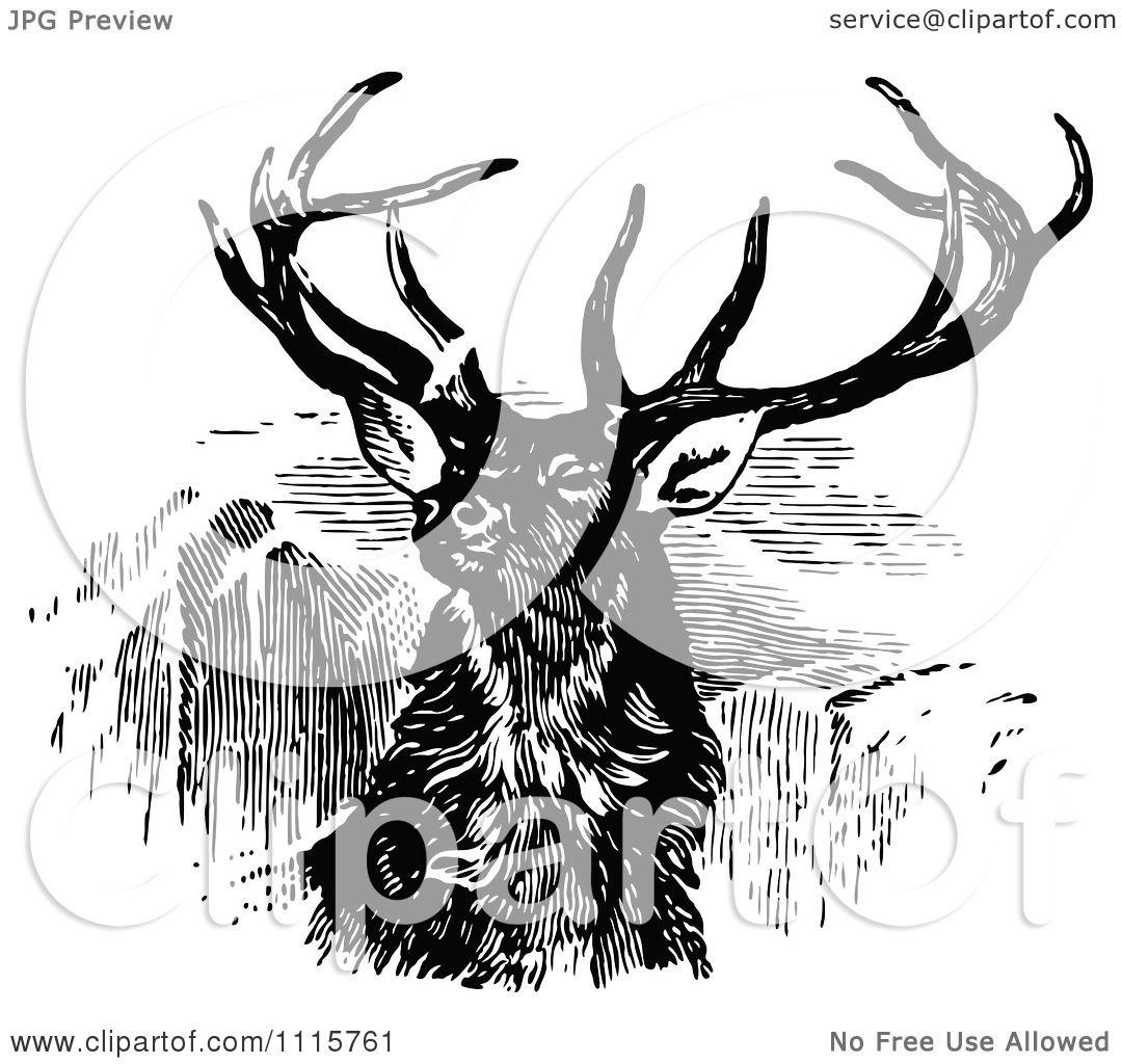 Deer illustration black and white - photo#21