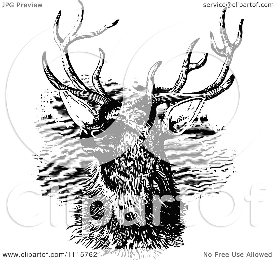 Classic Retro Illustration: Clipart Retro Vintage Black And White Stag Buck Deer With