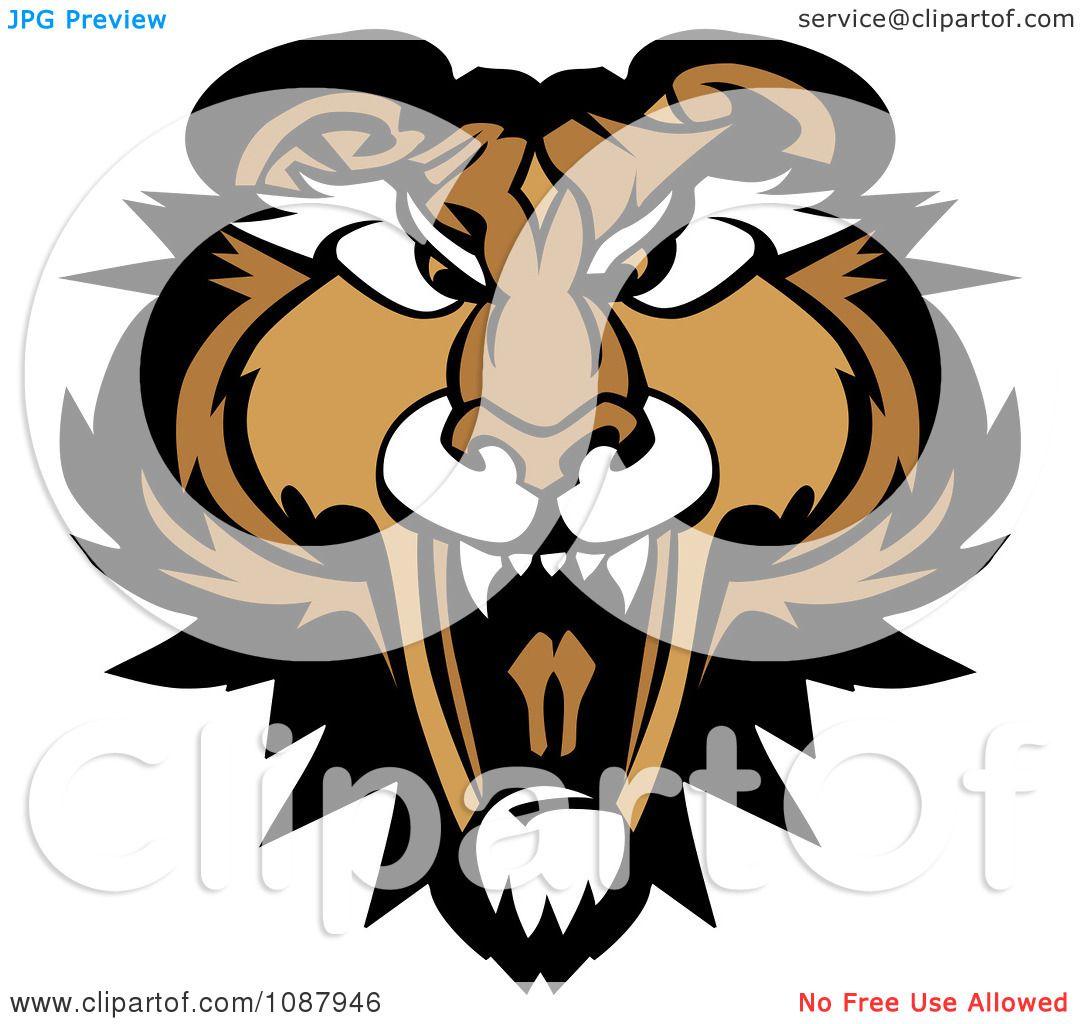 clipart roaring puma mountain lion head mascot royalty free vector rh clipartof com