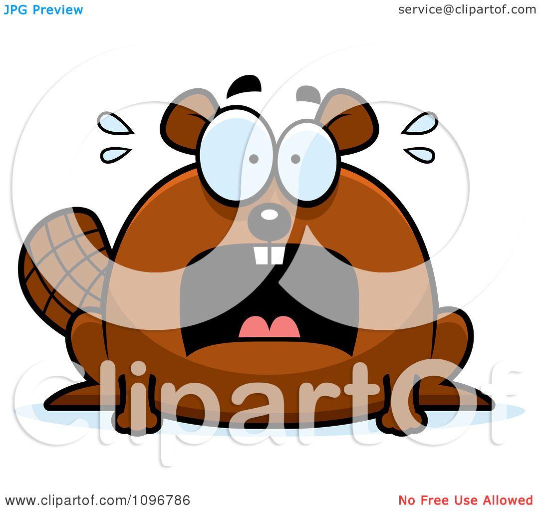 clipart scared chubby beaver
