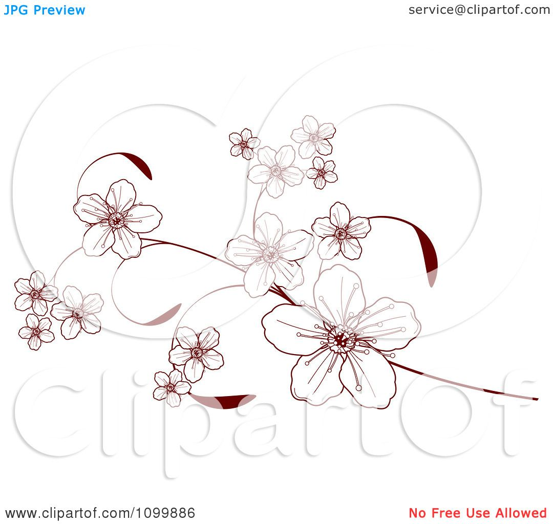 Cherry Blossom Branch Clip Art
