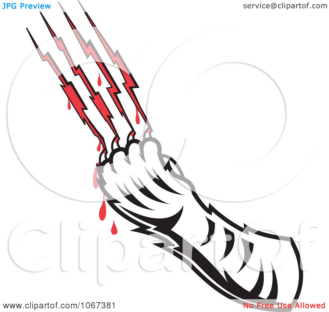 Clipart Tiger Drawing Blood From Scratches Royalty Free