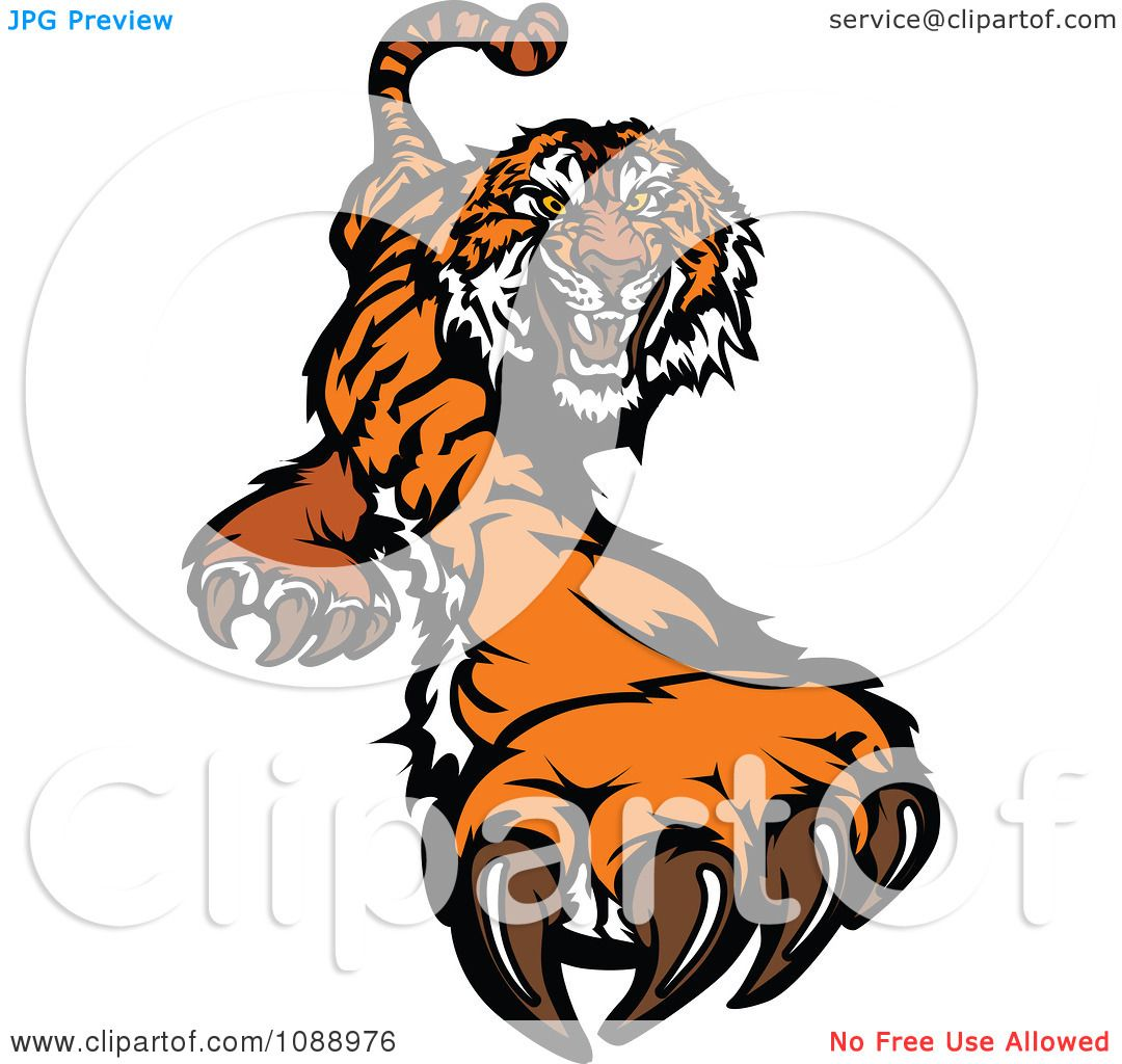 Related: Tiger Face Clip Art , Chinese Tiger Clipart , Baby Tiger ...