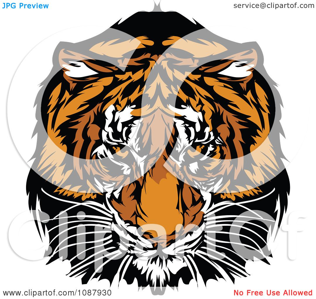 Fierce Tiger Clipart Clipart tiger mascot staring